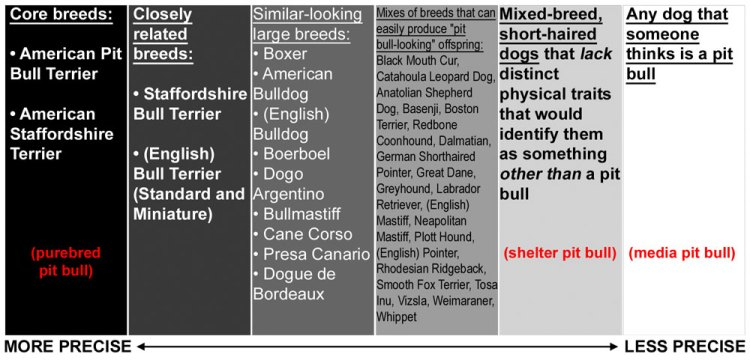 "The many dogs identified as ""pit bulls"""